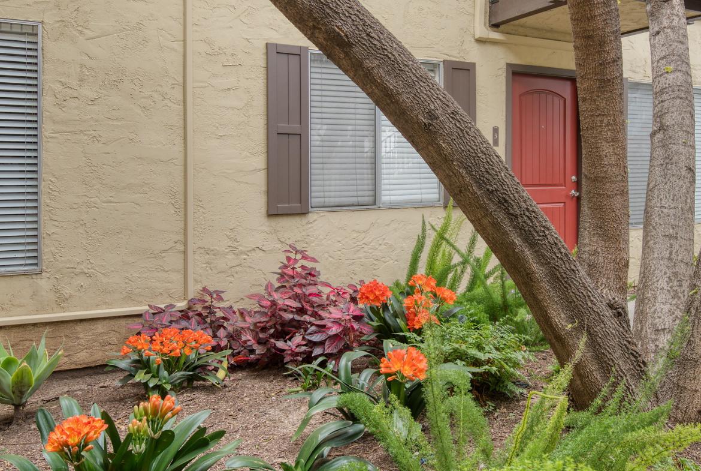 Hope Ranch Apartment Home-Sample Image of Santa Barbara CA Nurse Rental